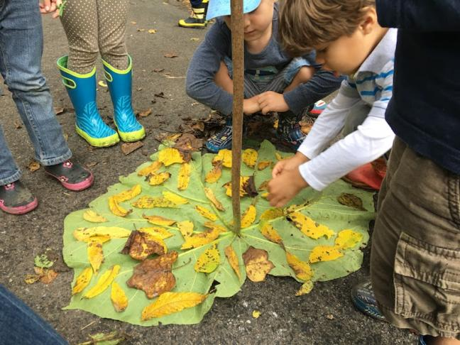 Photo credit: The Nature Preschool at Irvine Nature Center