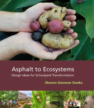 Front cover of Asphalt to Ecosystems