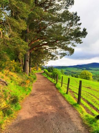 Scottish countryside.