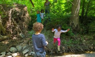 Children jump across the creek on a forest exploration.