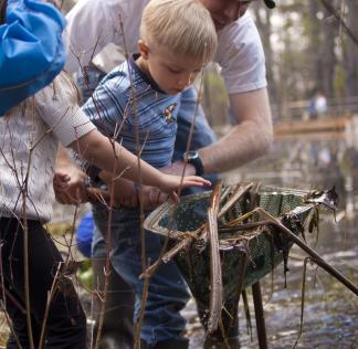At Chippewa Nature Center Preschool, students are literally immersed in nature and science education