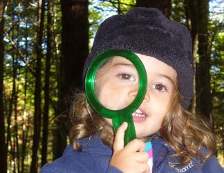 Wild Roots students explore with magnifying glasses and other tools.