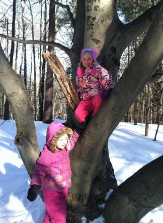 Often children have a short free play time in the woods at the end of their class hike.